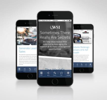 WSI Global Website
